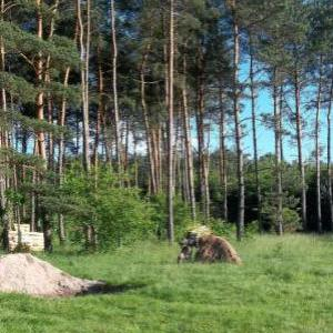 paintball mazury 6